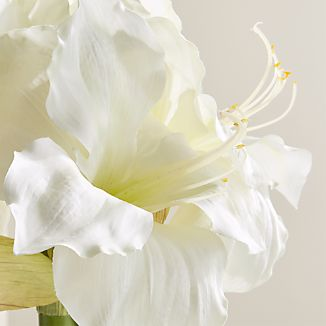 Our lifelike white amaryllis bunch mimics the favorite holiday bloom, ready to be dropped in a vase.