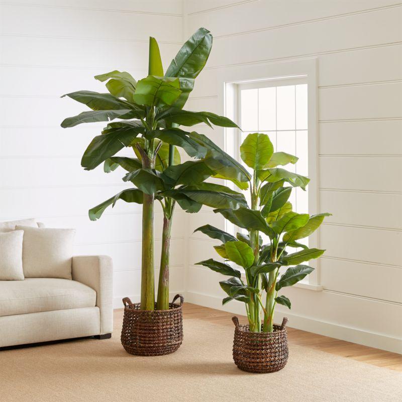 Faux Banana Plants Crate And Barrel