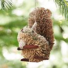 BuriSquirrelSHF16