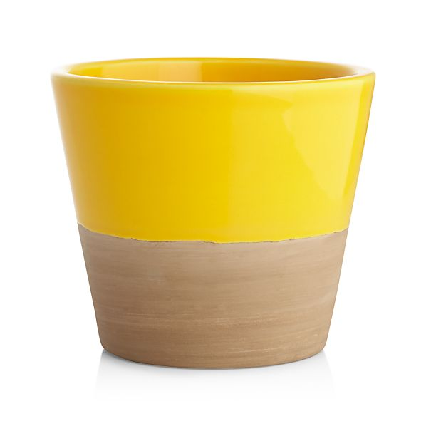 Carnivale Yellow Mini Planter