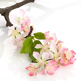 Light Pink Cherry Blossom Stem
