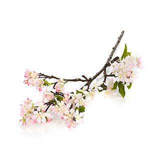 A sure sign that spring has sprung, delicate cherry blossoms herald the season with soft pink petals.  Our naturalistic stem preserves their beauty, suitable for a bud vase or bunched in a large vase.