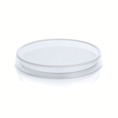 Clear Lazy Susan