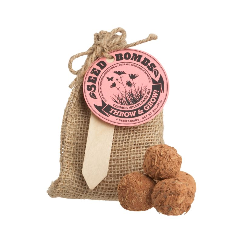 Launch these fun seed balls wherever the landscape needs an eco-friendly hit of color. Clay balls are loaded with hearty and easy-to-grow cosmo seeds. Just drench with water and bury partially in soil for a crop of native wildflowers. Great for beautifying small gardens or vacant lots. Seed bombs are packed four to a burlap bag, the perfect gift for a garden party.<br /><br /><NEWTAG/><ul><li>Handcrafted</li><li>4 seed bombs: seed, clay and soil conditioner</li><li>Packaged in burlap bag</li><li>Made in USA</li></ul>