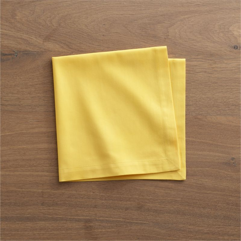 """Lustrous cotton napkin coordinates with any and every table setting. Napkin is tailor finished with 1"""" hem and mitered corners.<br /><br /><NEWTAG/><ul><li>100% cotton</li><li>Machine wash; tumble dry, warm iron as needed</li><li>Made in India</li></ul>"""