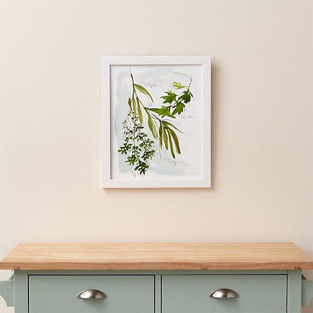 Culinary Herbs No. 1 Print