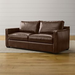 Davis Leather Queen Sleeper Sofa with Air Mattress