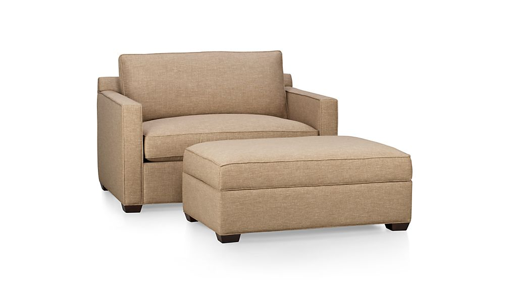 Davis Twin Sleeper Sofa Darius Mink Crate And Barrel