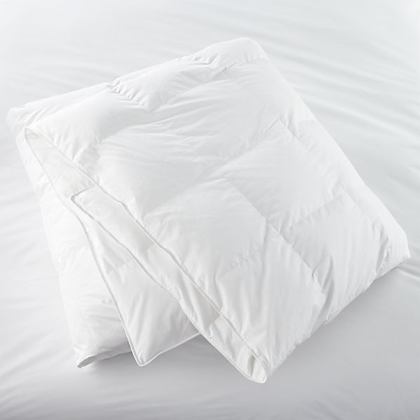 Twin Down Duvet Insert