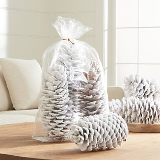 "Create a wintery wonderland on the mantel or table with this set of three oversized sugar pine cones flocked in white ""snow."" Packaged with a raffia bow for easy gift giving."