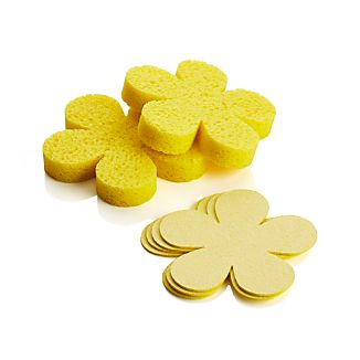 Set of 6 Pop-Up Flower Sponges