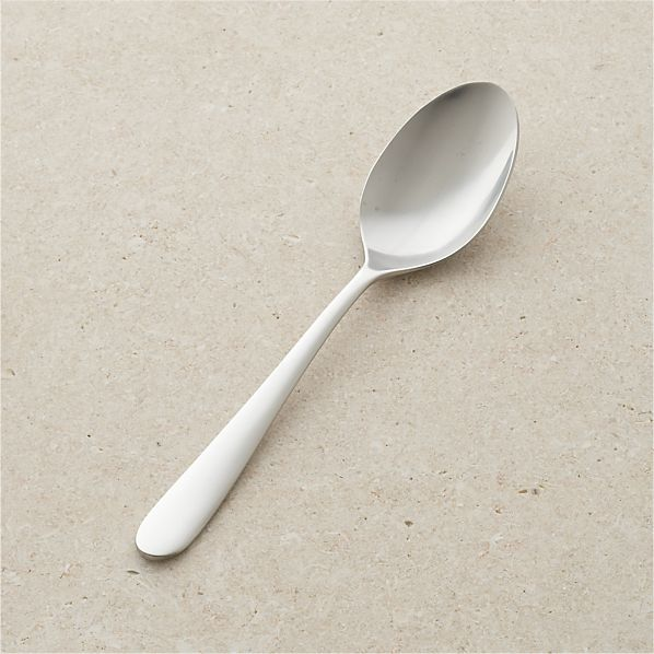 Fusion Serving Spoon