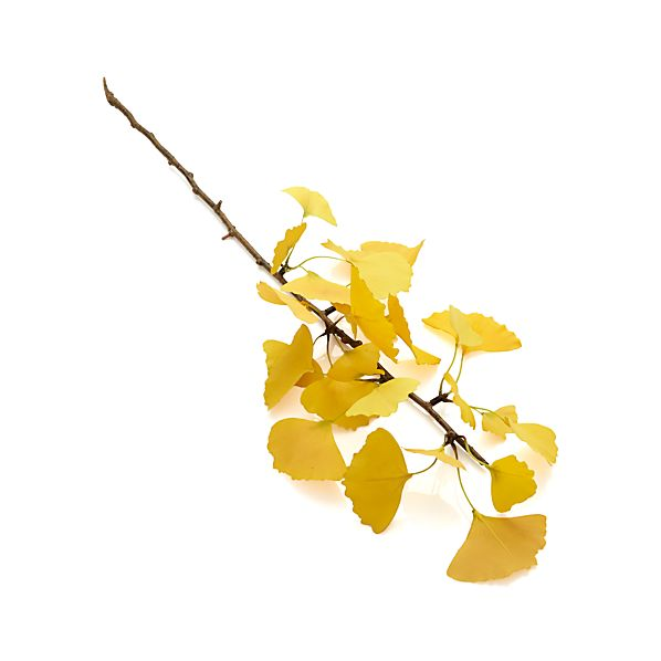 Yellow Ginkgo Stem Artificial Branch