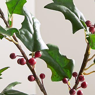 Holly Flower Stem