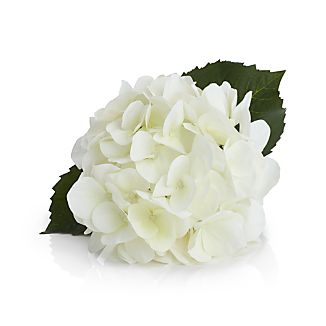 Grace your faux floral arrangements with the refreshing white and clustered blossoms of a hydrangea stem, one of summer's beloved blooms.