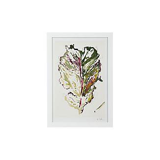 Kale Leaf Print