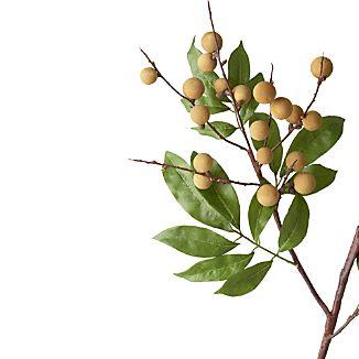 Longan Artificial Flower Stem