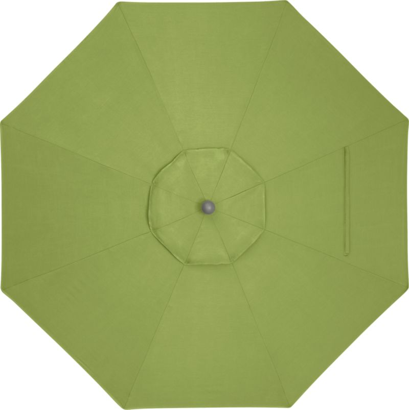 A fresh kiwi green canopy in fade- and mildew-resistant Sunbrella® acrylic blocks out 98% of the sun's rays. Frames and stands sold separately.<br /><br /><NEWTAG/><ul><li>Cover: fade- and mildew-resistant Sunbrella acrylic umbrella (fits all 9' round frames; spot clean)</li><li>Made in China</li></ul><br />