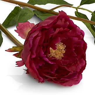 When lush, fragrant peonies are in bloom, summer can't be far behind. Preserve the moment with our gorgeous fuchsia-colored peony stem, realistically detailed with three buds, one fully open, one on the verge and one still closed.  Verdant green leaves complete the illusion.  Bendable stem allows for easy and creative arranging.
