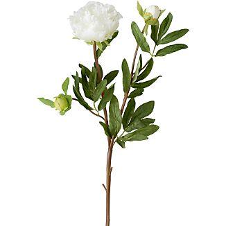 White Peony Artificial Flower Stem