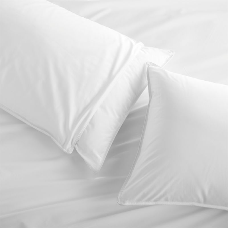 "Upgrade to our exclusive new pillow protector in 300-thread-count cotton with a beautiful sateen finish and zipper closure for easy laundering. <a href=""/bed-and-bath/bed-pillows/1"">Bed Pillows</a> also available.<br /><br /><NEWTAG/><ul><li>300-thread-count cotton</li><li>Machine wash in warm water, like colors, no bleach</li><li>Tumble dry, medium heat until thoroughly dry</li><li>For best results, professional laundering is recommended</li><li>Do not dry clean</li><li>Made in China</li></ul><br />"