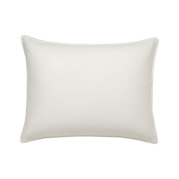 Set of 2 Standard Pillow Protectors