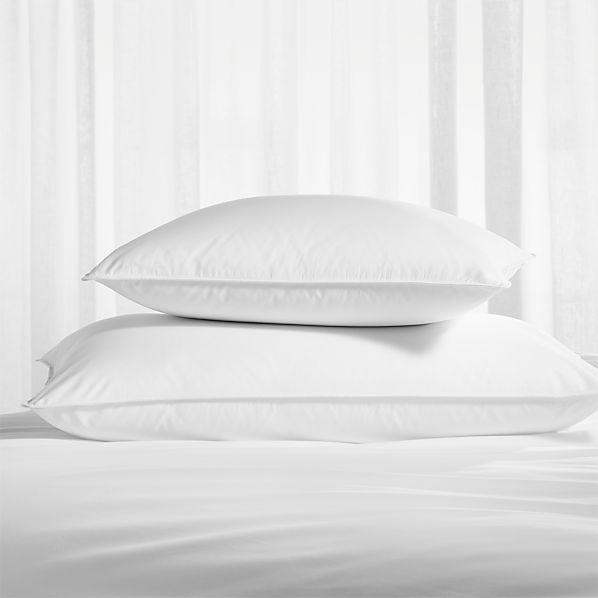PillowProtectorsGroupSHF16
