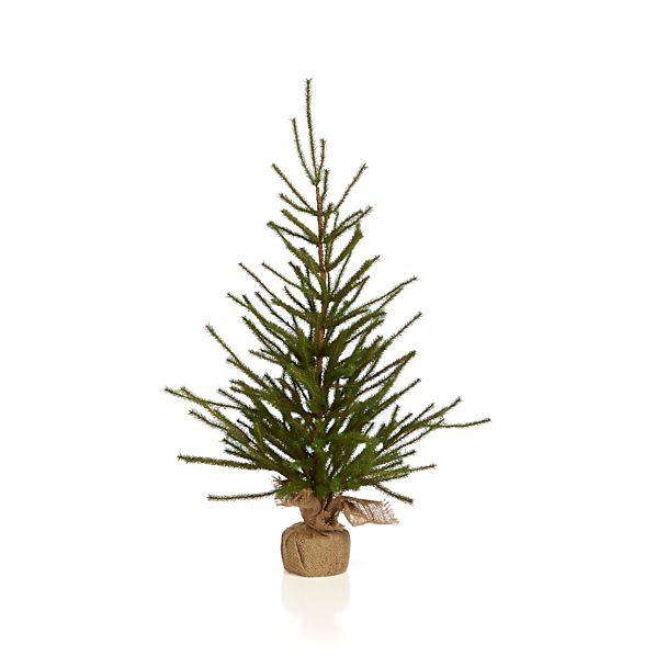 Pine Tree Medium