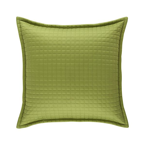 Plaza Peridot Euro Pillow Sham