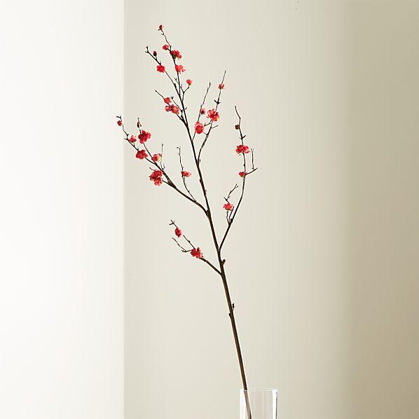 PlumBlossomSprayROSHS17