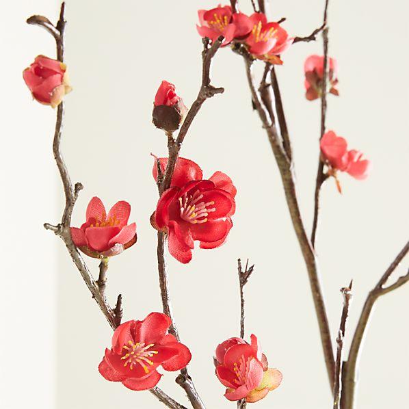 Plum Blossom Flower Stem