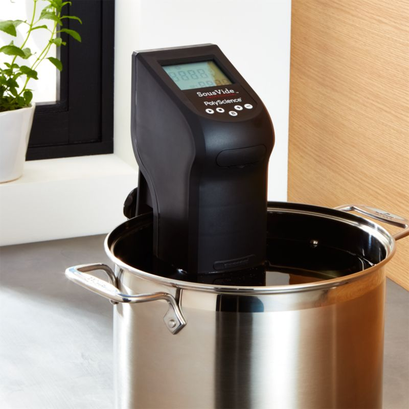 Polyscience Sous Vide Immersion Circulator Crate And Barrel