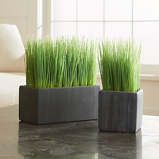 Row up these pots of faux grass for a modern twist on Easter décor or as an all-year interior accent. Cement pot adds a rustic feel to its contemporary shape.Cement potPlastic grassMade in China