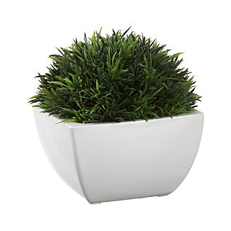 Potted Artificial Moss