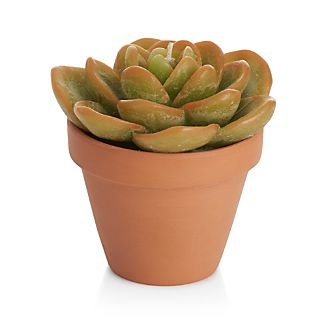 Our crimson-tipped succulent candle, potted in a classic terra cotta container, looks just like the real thing. Perfect as a gift, this charming candle also adds a fresh, botanical accent to the spring table.