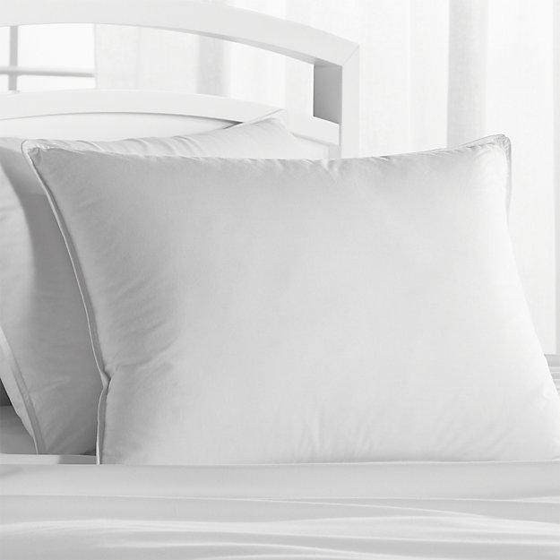 Premium Down Standard Pillow