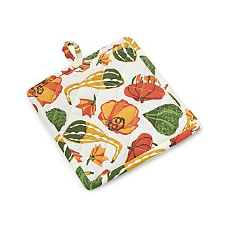 Pumpkin Gourd Pot Holder