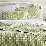 Raj Reversible Green Full/Queen Quilt