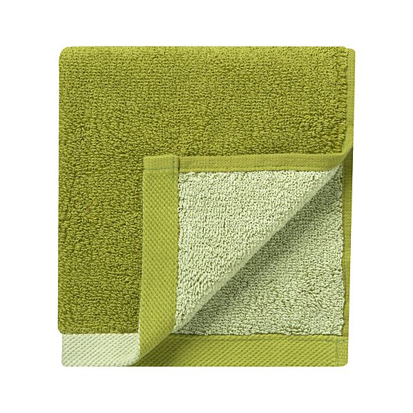 Reversible Green Washcloth