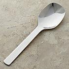 Savor Serving Spoon.