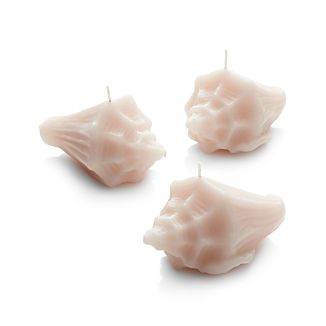 Beachcombers will delight in this set of diminutive conch shell candles, crafted with realistic natural detail and nestled in a convenient gift box. A single candle sets a seaworthy tone, or all three can be scattered in a large hurricane as if they were found scattered in the sand.