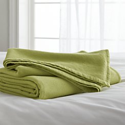 Siesta Green Twin Blanket