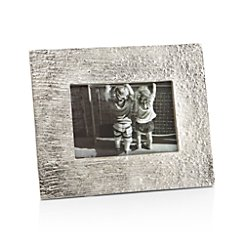 Silver Bark 4x6 Picture Frame