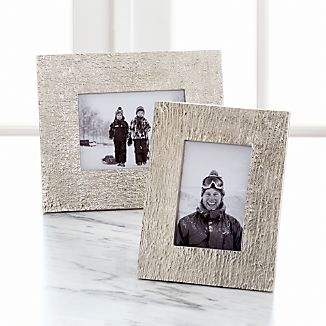 Silver Bark Picture Frames