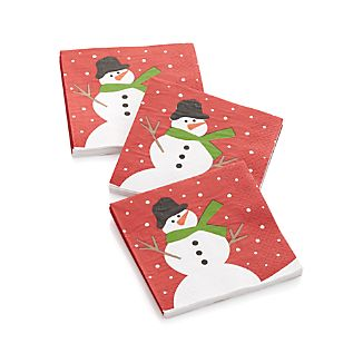 Snow Day Paper Beverage Napkins Set of 20