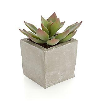Potted Artificial Short Succulent
