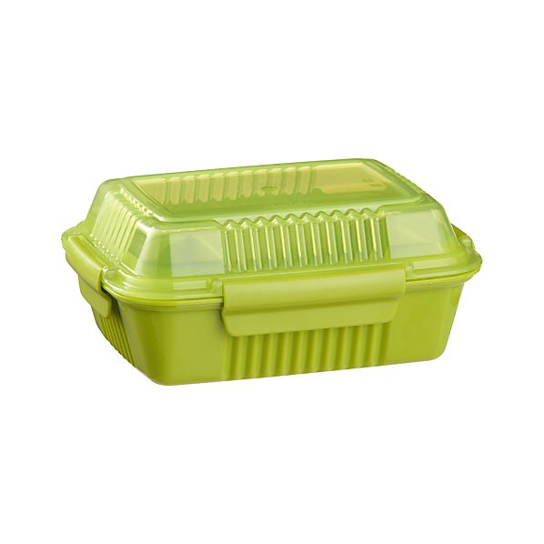 Large Green To-Go Container