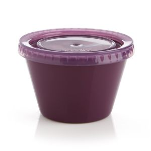 Purple To Go Snack Container