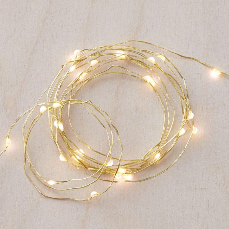 Twinkle Gold 50' String Lights