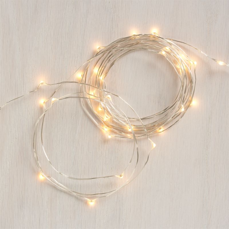 Tiny twinkling lights on a slender silver wire wrap trees, garlands and shrubbery with an elegant sparkle and warm glow. Beyond the holidays, versatile indoor-outdoor lights create a soft glow for seasonal dining al fresco. Battery-operated lights have an optional timer function for 8 hours on, 16 off.<br /><br /><NEWTAG/><ul><li>LED light bulbs and UL approved wire</li><li>For indoor or outdoor use</li><li>Battery operated; average battery life of 160 hours; requires three AAA (not included)</li><li>Made in China</li></ul>